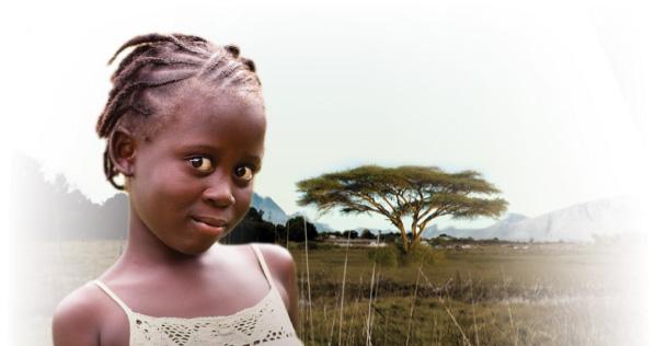Lutheran Malaria Initiative